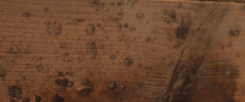Close up of texture and details on reclaimed scaffolding board